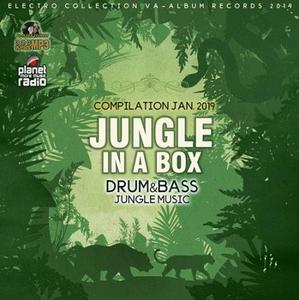 VA - Jungle In A Box (2019)